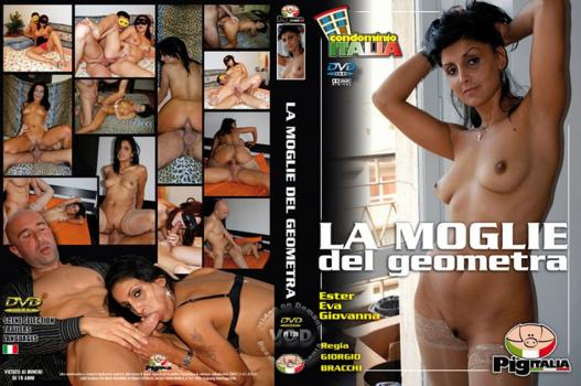 La Moglie Del Geometra (2009)