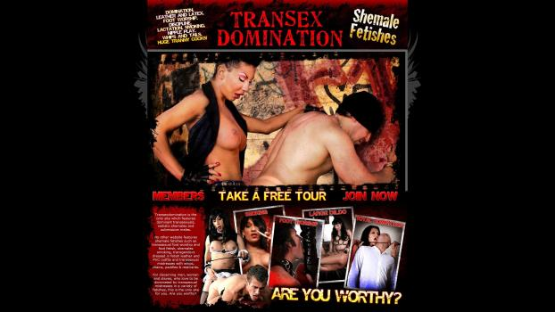 TranSexDomination – SiteRip