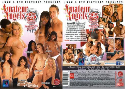 30094257_1106803-amateur-angels-25-front-dvd.jpg