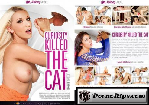 31743957_curiosity-killed-the-cat.jpg