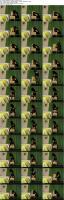 31929283_kirstystgplayground_dildo_red_black_hi_s.jpg